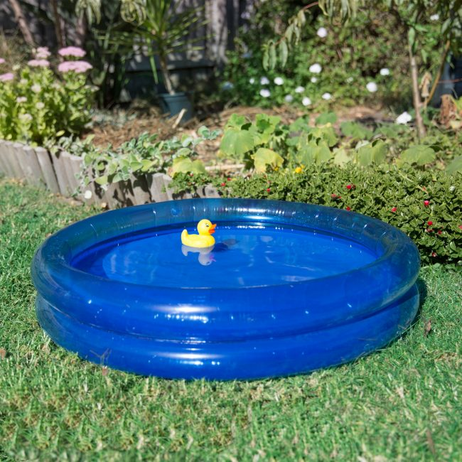 0170206-Bath-Duckie-Water-Play-2-(square)