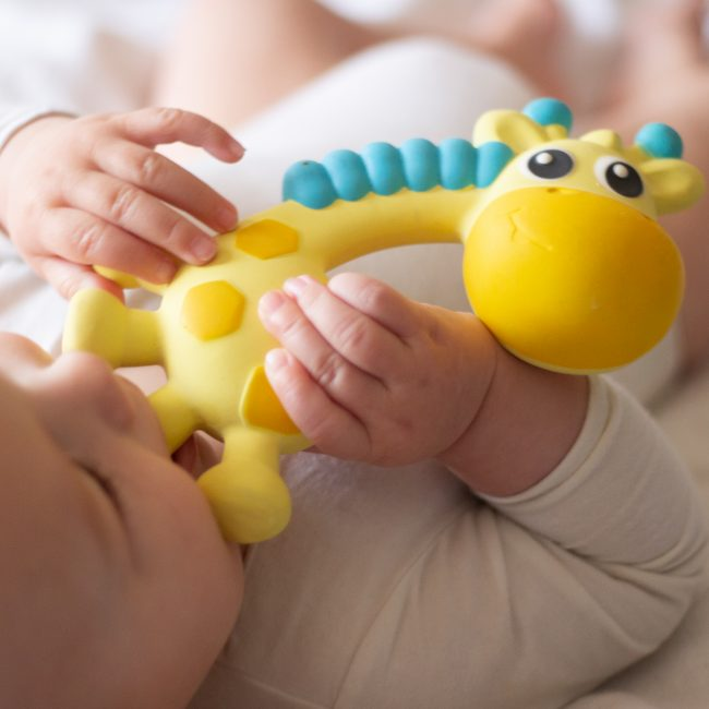 0186970 Squeak and Soothe Natural Teether