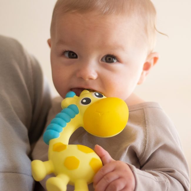 0186970 Squeak and Soothe Natural Teether T3